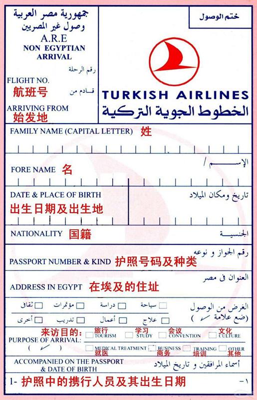 埃及入境卡样本